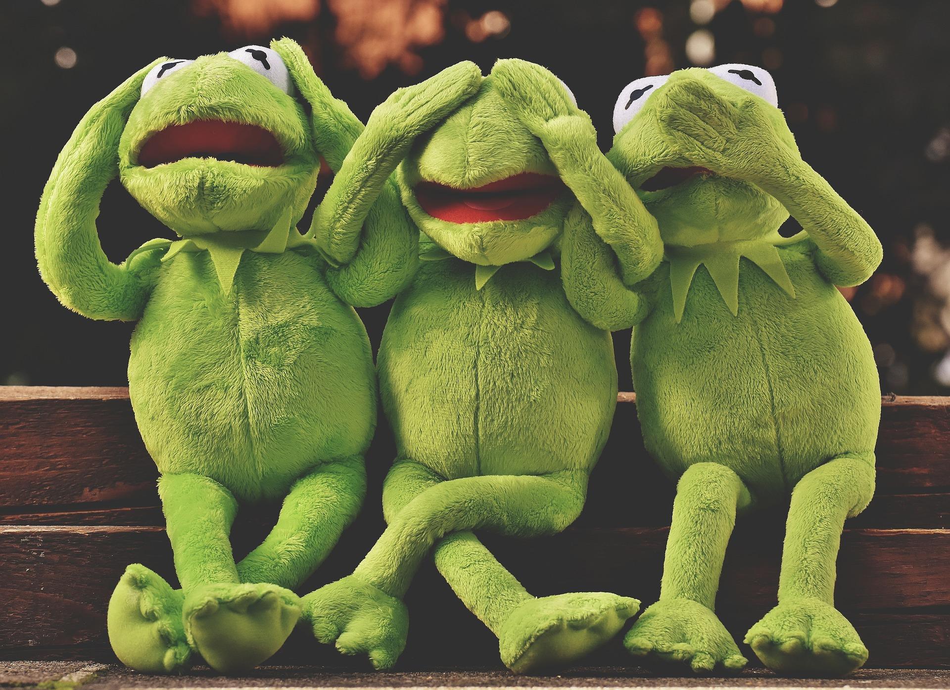 Frogs - see no evil, speak no evil, hear no evil